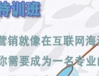 2017泰安全网网络营销推广技术培训班(全程实战)