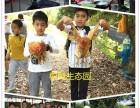 深圳松湖生态园亲子户外游亲子手工基地有哪些优势