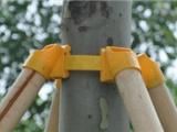 欢庆木材,原木支撑杆厂家专业郑州杉木杆生产多年