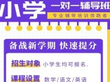 北京小升初語數外輔導,小學初中高中暑假輔導