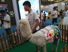 上海静安区出租驼羊-租赁矮脚马-转租小香猪-公园草坪婚礼庆典
