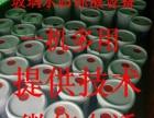 创业好项目生产玻璃水 防冻液 洗衣液