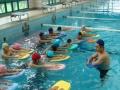 蓝海御华大酒店游泳培训班优惠进行中!