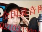 宁夏枸杞广告录音及制作1