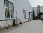 新站区新蚌埠路附近1560平方标准钢构厂房出租