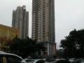 福田区459平米盈利乒乓球馆办公厂房场地