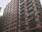 深圳市龙华新区宝龙新村全新装修设施齐全主题公寓转让