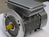 YLW 220V 单相电机 铝壳电机 双电容交流异步电动机