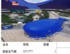 海洋球鲸鱼岛出租,鲸鱼岛厂家租赁价格,巨型鲸鱼气模