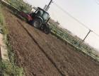 武汉哪里有私家菜园设计?17帮农提供全程一对一服务