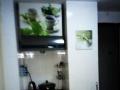特惠地铁桃园站高档公寓200兆上网做饭洗衣