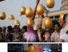 桂林活动庆典金蛋厂家直销,砸金蛋道具批发,金蛋批发
