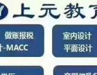 松江大学城高级花艺师培训,零基础学习插花开店技能