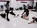 专业打造明星教练成就舞者梦想名师一对一辅导随到随学
