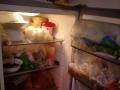 低价出售二手冰箱