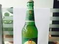 德仕利啤酒加盟 名酒 投资金额 5-10万元