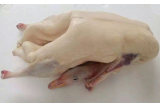 鸿兴鹅业-有知名度的鹅体批发商|批发白条鹅