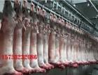 牛羊下货供应
