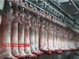 牛羊下货招商