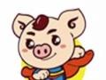 小猪快跑饮水机清洗、油烟机、空调清洗、家庭保洁搬家