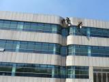 2019南京蜘蛛人专业承接高空外墙清洗,幕墙玻璃清洗服务公司