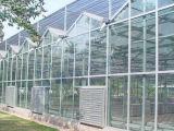 拱形连栋温室承建哪里有提供称心的连栋温室