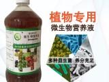 益富源无土栽培水培蔬菜营养液通用型批发价格多少钱