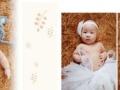 免费上门拍满月、百天韩式写真集499元一套!