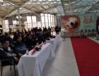 直径2.5米大足球亮相哈尔滨 万人签名首签典礼