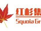 中信普惠招全国空白区域代理商