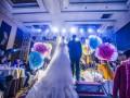 追梦文化婚礼传媒
