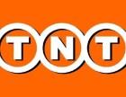 大连市TNT快递德律风金州区TNT快递德律风