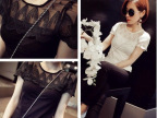 2014夏季新款女装 孔雀蕾丝拼接短袖纯色短袖网纱t恤 打底衫 女
