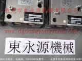SEYI冲床润滑油泵,压力机湿式离合器齿轮 东永源专业
