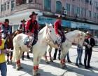 广州五一马车租赁皇家马车展示巡游马匹骑乘