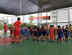 南宁青少年篮球培训中心西乡塘少儿青少年篮球培训班