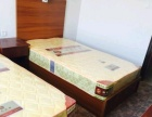 出租南华650平米商住公寓5000元/月