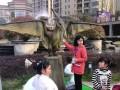 展览恐龙出租恐龙租赁