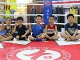 北京儿童家学拳击搏击泰拳散打好,北京少儿散打培训班