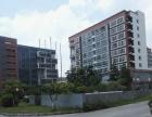 坪山 大工业区楼上带红本层高4.5米1000平厂房