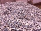 梁山河卵石.鹅卵石