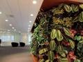 山东佰利梦植园责任有限公司加盟 清洁环保
