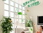 环保水漆品牌加盟代理 莲花水漆