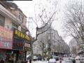 中百一店西乐天玛特旁西仓路沿街商铺230平280万