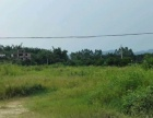 清新山塘镇低村委开发区土地10亩,出租15年,可做厂房