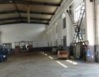 铁西厂房2000平高4.5米