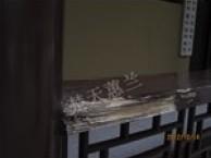 石排白蚁防治,桥头白蚁防治,企石白蚁防治所,彻底清除白蚁