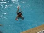 雅泰家园较近学习游泳较好的恒温游泳馆