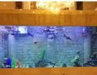 南通鱼缸厂家高端定制办公室水族箱 生态鱼缸