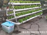 阳台露台种菜A字形双面水培机无土栽培营养液水培智能式园艺工具